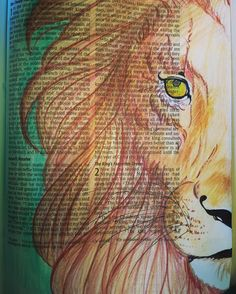 Been messing around with some more Bible Journaling... Here's the lion I did for…