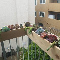Balcony Rail Planter Box - Estás en el lugar correcto para healthy desserts Aquí presentamos healt que está buscando con la - Outdoor Planter Boxes, Balcony Planters, Balcony Flowers, Garden Planters, Deck Railing Planters, Balcony Deck, Plants On Balcony, Garden Railings, Gardens