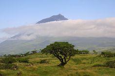 Montanha do Pico, na ilha do Pico - Açores