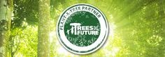 trees for the future - Google Search