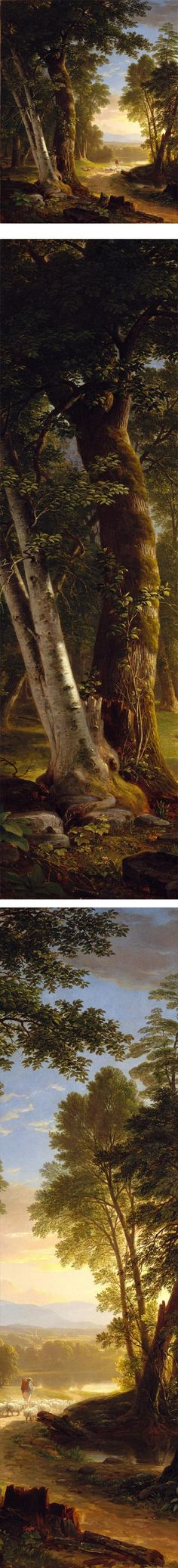 Eye Candy for Today: Durand's Beeches