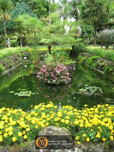 """One of many beautiful flower gardens at """"Jardim Duke of Terceira"""".  This historical garden is located in the center of Angra do Heroísmo in Terceira, #Azores. http://www.marialanguages.com/studyabroad/study-portuguese-abroad.shtml"""