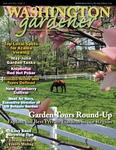 Kathy Jentz, @WDCGardener, Editor of Washington Gardener Magazine (cover May 2015), chats about soils & gardening in Mid-Alantic Region on #groundchat. Join us Friday, June 19 at 2 pm EST.