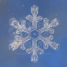 Snowflake photographed by Karla Jean Booth of Real Snowflake Photography LLC