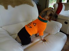 New dog sweater pattern for sale from my mama! Fits small/medium, such an adorable Halloween outfit!!