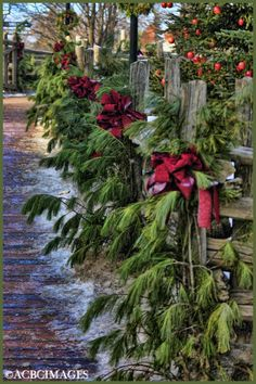Christmas greenery on fence This is beautiful. I am going to do this around my fence. Christmas Greenery, Noel Christmas, Outdoor Christmas Decorations, Green Christmas, Primitive Christmas, Country Christmas, Winter Christmas, Outdoor Garland, Pine Garland