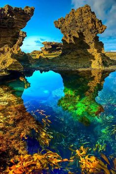 Back Beach,Australia | Most Beautiful Pages