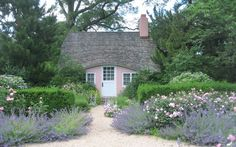 Lavender and roses.  Poppy Cottage