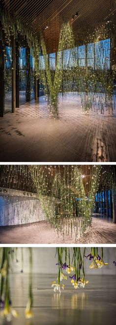 Artist Rebecca Louise Law's new exhibition titled The Iris