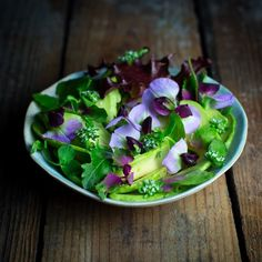 Who needs a dressing when you have ingredients like this? Ripe avocado local sweet pea flowers local maché flowers local baby red leaf lettuce and local magenta screen lambsquarter with a splash of lemon juice and a sprinkling of sea salt. This photograph was take in a hand made bowl created by my lovely friend Cara of @caracaraorange whose beautiful work I use often. We have an idea for a pop up dining experience here in NYC where a part of the ticket price includes a piece of original…