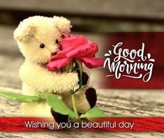 Best Beautiful Good Morning Images Best Collection Only Good Morning Images Good Morning Wishes Love, Good Morning Sexy, Good Morning Friends Quotes, Good Morning Roses, Good Morning Greetings, Morning Quotes, Morning Post, Beautiful Morning Pictures, Cute Good Morning Images