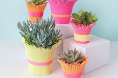 Se o seu jardim está precisando de visual novo invista em capa de papel para vasinhos de planta, que