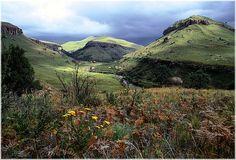 Drakensberg - Winterton & the Central Drakensberg - Home - Tourism KwaZulu-Natal Kwazulu Natal, Wild Life, South Africa, Tourism, Hiking, Mountains, Nature, Travel, Turismo