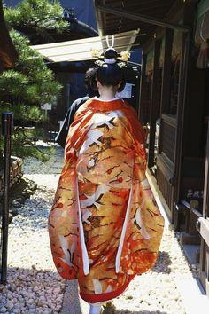 A Polish Woman Wearing a Japanese Kimono in the Grounds of Shimogamo Jinja, Kyoto by Andy Heather Japanese Wedding Kimono, Japanese Kimono, Japanese Brides, Japanese Beauty, Asian Beauty, Japanese Lady, Japanese Geisha, Yukata, Japanese Culture