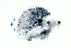 Image result for hedgehog painting