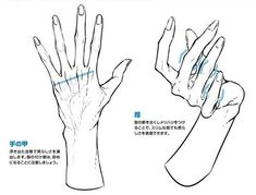 Hand Drawing Reference, Body Reference, Art Reference Poses, Anatomy Reference, Drawing Poses, Drawing Tips, Drawing Sketches, Drawing Hands, Hand Drawings