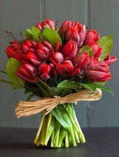 "Képtalálat a következőre: ""gerbera"" All Flowers, My Flower, Fresh Flowers, Beautiful Flowers, Wedding Flowers, Beautiful Bouquets, Wedding Bouquet, Flower Power, Orquideas Cymbidium"