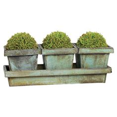 Brighten your kitchen windowsill or entryway console with this tin planter set, featuring a distressed green finish.  Product: S...