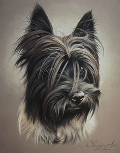 LOUSTIC - Pastel - 40x50cm by Skyzune ART • Artiste animalier • Peinture et pastel. #artiste #animalier #art #artist #pastel #chien #dog #portrait #Skyzune #softpastel #pastel #dessin #commande #pet #animal #artisteanimalier #drawing #commission #artwork #realistic #realisticportrait #hyperrealism #photorealistic #pastelart #artwork #petart #petportrait #petartist #animal #animalart #animalportrait #cane #portrait #softpastel