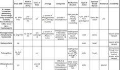 Veterinary drug overview charts Veterinary Care, Veterinary Medicine, Veterinary Technician, Veterinarian School, Student Info, Vet Med, Vet Clinics, Animal Science, Pharmacology