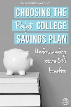 Choosing the Best 529 College Savings Plan for Your Family – Finance tips, saving money, budgeting planner College Savings Plans, Paying Off Student Loans, Saving For College, Scholarships For College, College Fund, College Students, Money Saving Tips, Money Tips