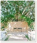 Scottsdale Arizona Weddings | Royal Palms – Wedding & Events | Wedding Venues in Phoenix AZ