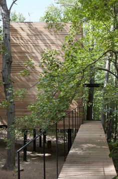 Steven Holl, T Space, long gently sloped ramp with black handrail leads up to cedar rain screen wrapped building floats on columns in the woods