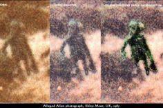Ufo e alieni:Ufo e alieni:IL caso di Ilkley Moore 29-08-2014 Uno dei casi di rapimenti alieni più unici che rari avvenne nella Ilkley Moor, Yorkshire, Inghilterra. Il protagonista della vicenda è l'ex-poliziotto Alan Godfrey, il quale dichiarò che la mattina del 01 dicembre 1987 fu rapito a bordo di un UFO e dopo il rilascio, riuscì a scattare una foto ad uno degli alieni...... http://www.extranormal.eu