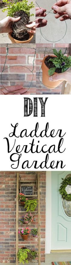 DIY Ladder Vertical Garden- could use these with the white ladders I'm buying maybe even spray with some wearherproofing stuff or something and put out on back patio where the steps are in that weird corner patch of grass by the bay window