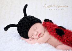 Love ladybugs!