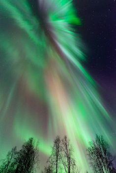 ~~Acrtic Lights ~ Aurora Borealis, Fairbanks, Alaska by Ben H~~