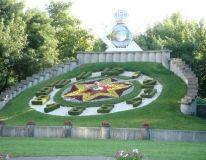 Ceasul floral Timisoara Baseball Field, Floral, Design, Flowers, Flower