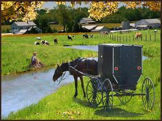 Amish Buggy with Boy Fishing  - photo A search of this on Bing.com Images brought up some wonderful photos of Amish life.  http://fineartamerica.com Photographer:  Dick Hollon