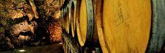 Il park Barrique è composto da piccole botti in rovere francese di 225 lt utilizzate per l'affinamento dei vini Rossi internazionali
