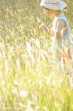 ●○夏のお散歩