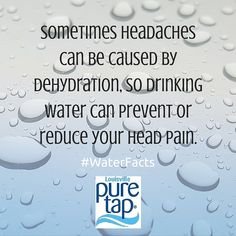 Water Facts, Head Pain, Drinking Water, Health, Aqua, Health Care, Salud