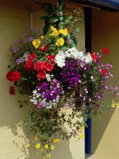 decorative-pots-hanging-planter