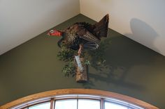 Taxidermy Decor, Taxidermy Display, Turkey Mounts, Trophy Rooms, Antlers, Game Room, Horns, Deer, Hunting