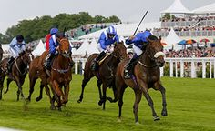 Ribchester and William Buick take the Jersey Stakes for Sheikh Mohammed and Richard Fahey. Number 1 for Godolphin out of three on the day.