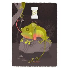 I for Iguana Print - Limited edition giclée print by Graham Carter at Soma Gallery, Bristol