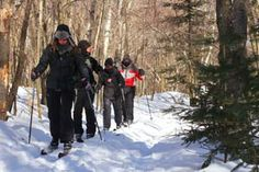 to Backcountry Clinic Clinic, Skiing, Tours, Outdoor, Ski, Outdoors, Outdoor Games