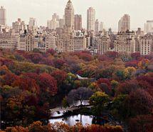 Inspiring picture autumn, beaut, beutiful, buildings, central park.