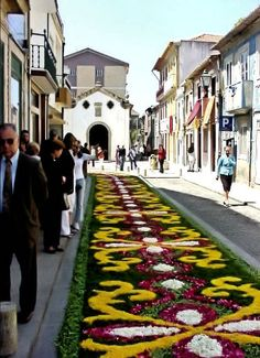 "Vila do Conde - Portugal ""Carpet of flowers"""