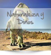 Estepa de los Dinosaurios , Villa el Chocon, Plaza Huincul, Zapala y General Roca