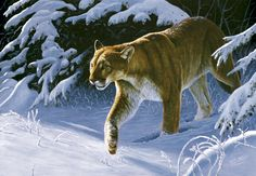 SILENT AS THE SNOW Wildlife Paintings, Wildlife Art, Hunting Art, Outdoor Paint, Mountain Lion, Animal Totems, Painting Patterns, Painting Inspiration, All Art