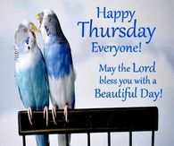 Happy Thursday Everyone May The Lord Bless Your Day
