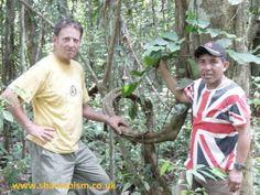 http://www.shamanism.co.uk    HOWARD G. CHARING & JAVIER AREVALO