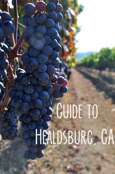 Guide to Healdsburg, CA – A Life Well Lived