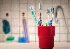 Nejčtenější článek >> 8 tipů, co s použitým zubním kartáčkem. Inspirujte se na aukroblogu! Bydlíme, zahradničíme, testujeme, drbeme, doporučujeme!