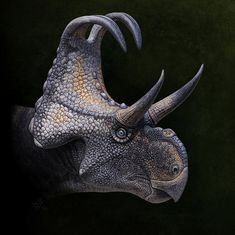 Machairoceratops by Andrey Atuchin on DeviantArt